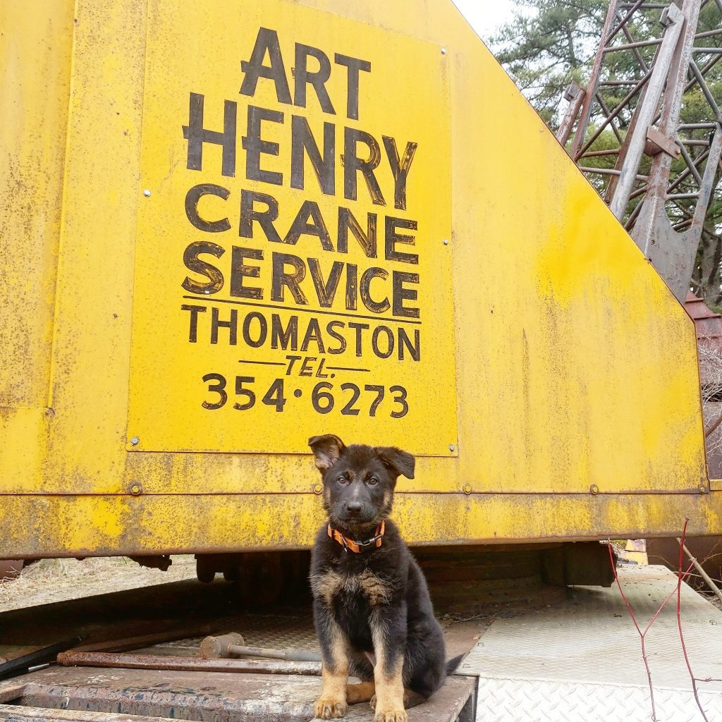 Visit Art Henry Crane Services